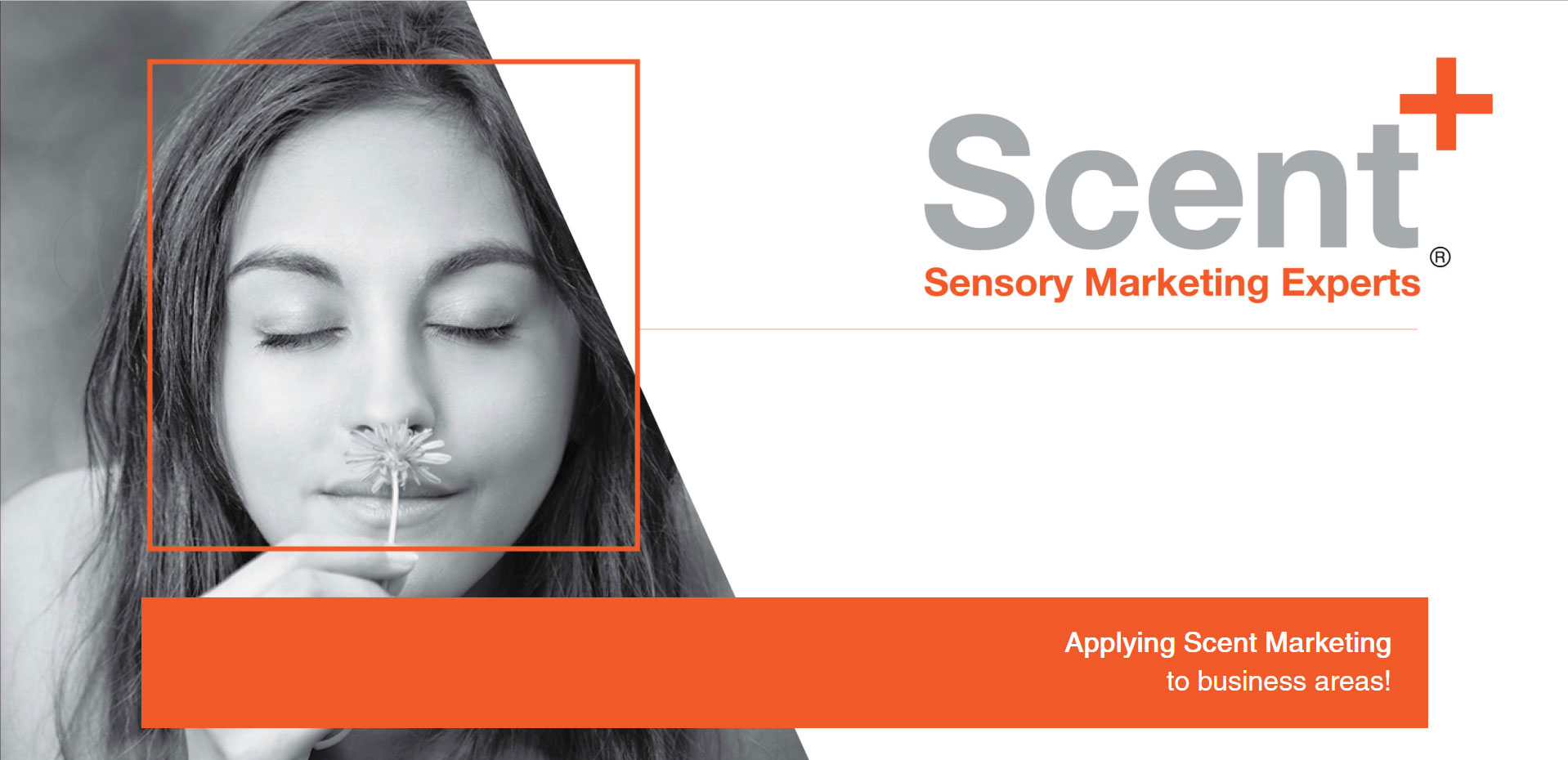 Scent + | Sensory Marketing Experts